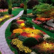 Τρικ με πάνες ενηλίκων για τον κήπο σας.